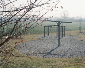 Playground behind leafless bush with red berries