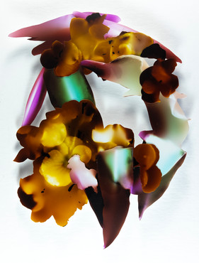 Posie (hydrangea, lily)