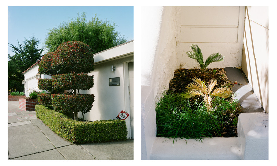 Untitled diptych #2