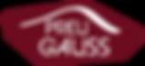 Logo Preu Gauss.png