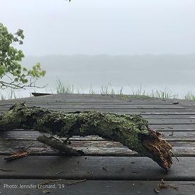 Dock and Grass-Jennifer Leonard '19.jpg