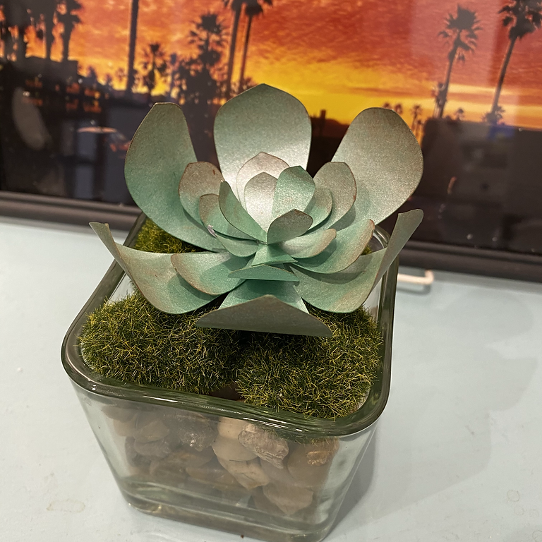 """""""YouTime"""" Craft Night: Paper Succulents"""