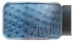 Par5SilverLight