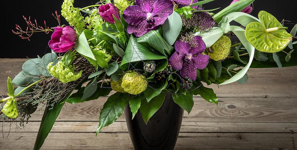 Highlight in violett