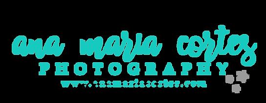 website logo stars.png