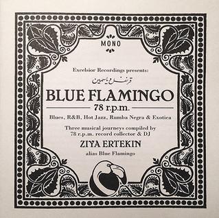 Packaging: DJ Blue Flamingo
