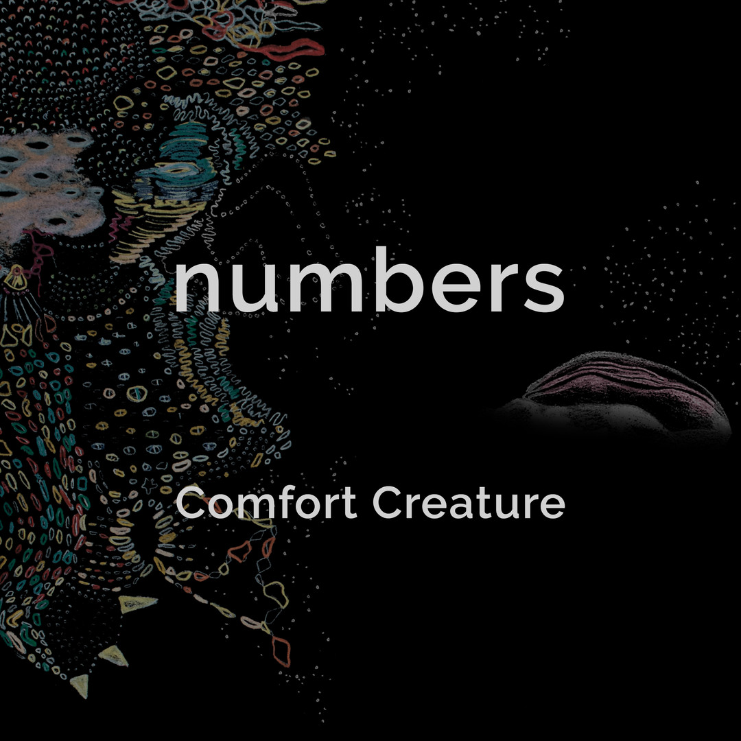 Numbers cover w/ text