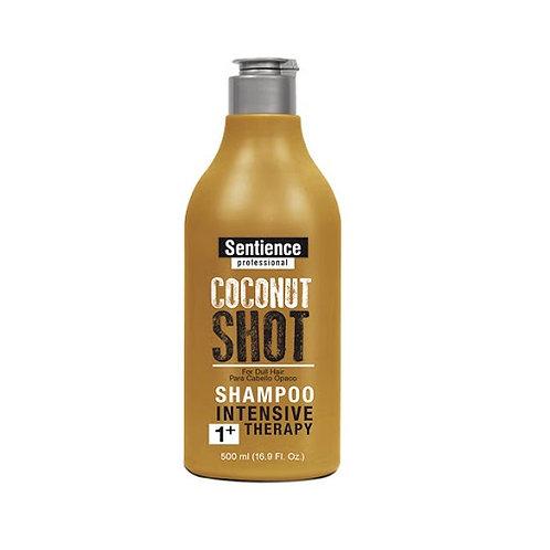 SENTIENCE COCONUT SHOT SHAMPOO 500ML