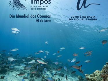 Dia dos Oceanos: Ações humanas influenciam nas águas de rios e mares