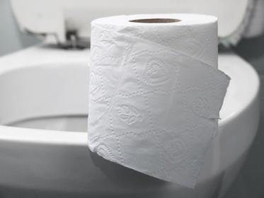 Pode ou não pode jogar papel no vaso sanitário?