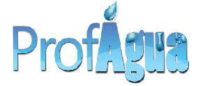 Diálogo ProfÁgua-Comitês: em busca dos grandes temas para a gestão das águas no Brasil