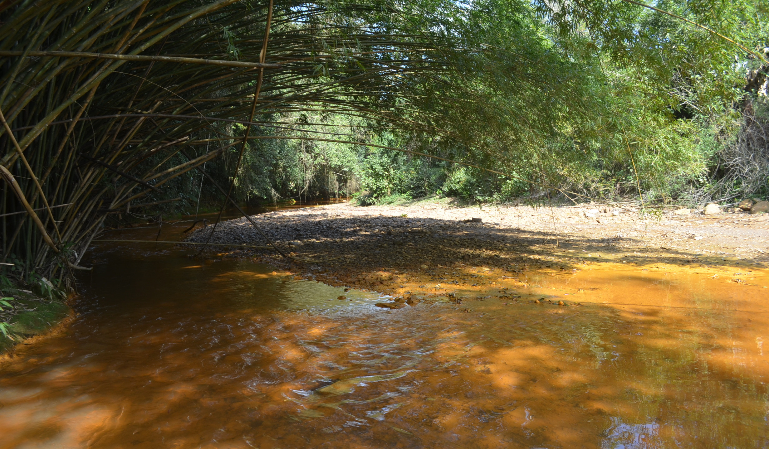 onde nasce o Rio Urussanga (2)