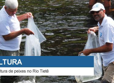 DAEE realiza soltura de peixes no Rio Tietê
