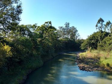 Comitê Araranguá completa 17 anos de ações pela preservação das águas no Sul catarinense