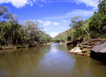 Estado promove ações pelo Dia Mundial da Água