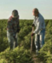 CW-farmers.jpg