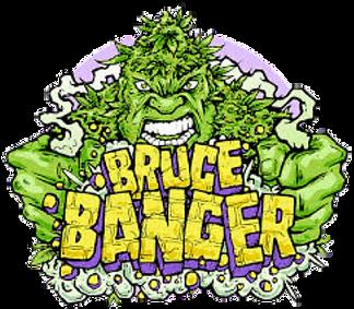 Brance Banger PNG.png
