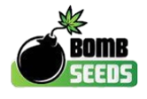 Bomb Seed Logo PNG.png