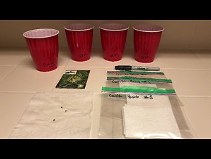 Seed Germinating Supplies
