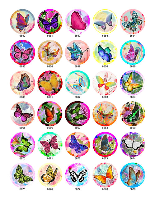 Summer Butterfly Collection