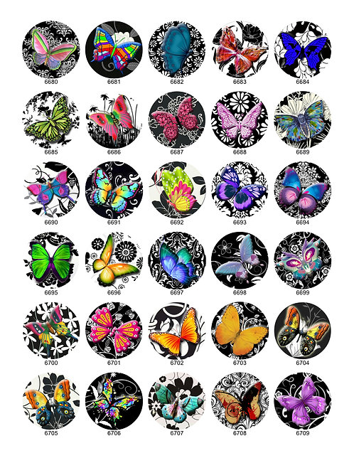 Bright Elegant Butterfly Collection