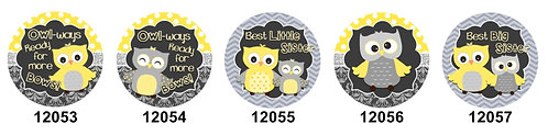Big Sister-Little Sister Owls 12053-12057