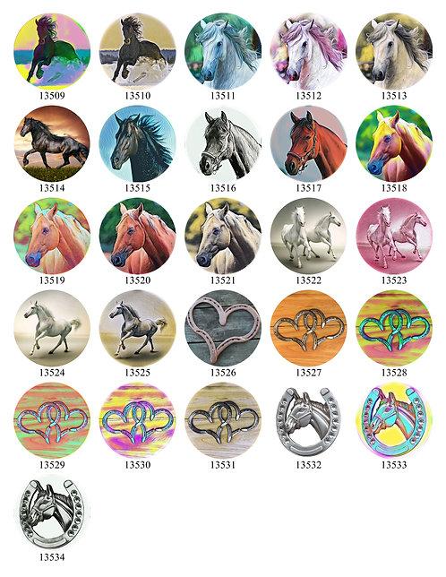 Horses 13509-13534
