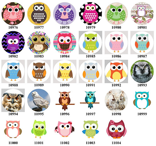 Owls 10976-11004