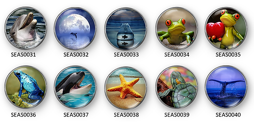 SeaShore Dreams SEAS0031-SEAS0040