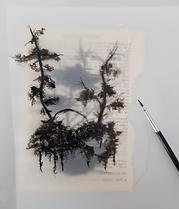 ResizedImage220257-Trees-with-paint-brus