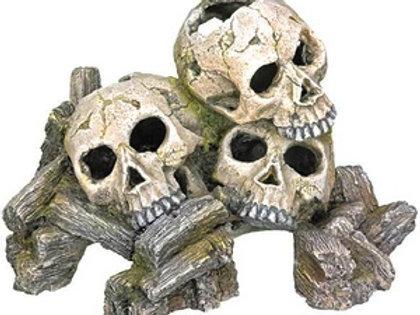 Têtes de mort