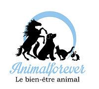 animalforver2[4454].jpg