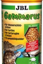 Gammarus nettoyés