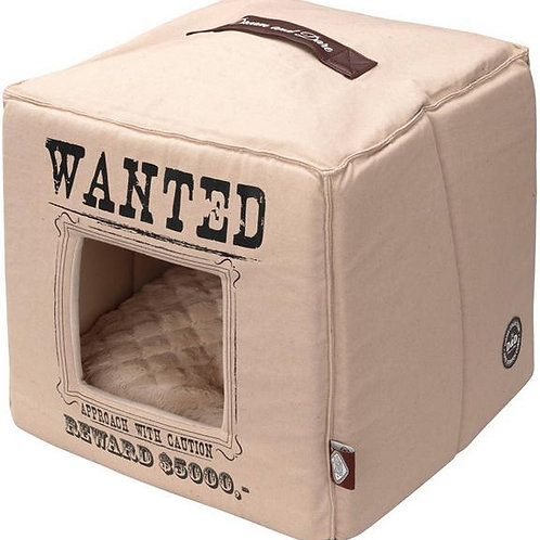 Pet-Cube Wanted