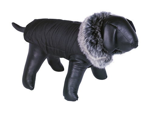 Adua Dog Coat