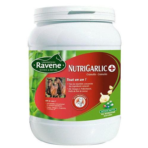 Ravene Nutrigarlic