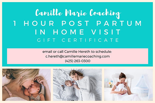 Post Partum In Home Gift Certificate