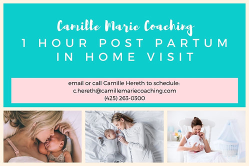 Post Partum In Home Support