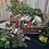 Thumbnail: Create your own Wreath and Canapés for 2 people