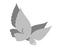 Butterfly%20vector_edited.png