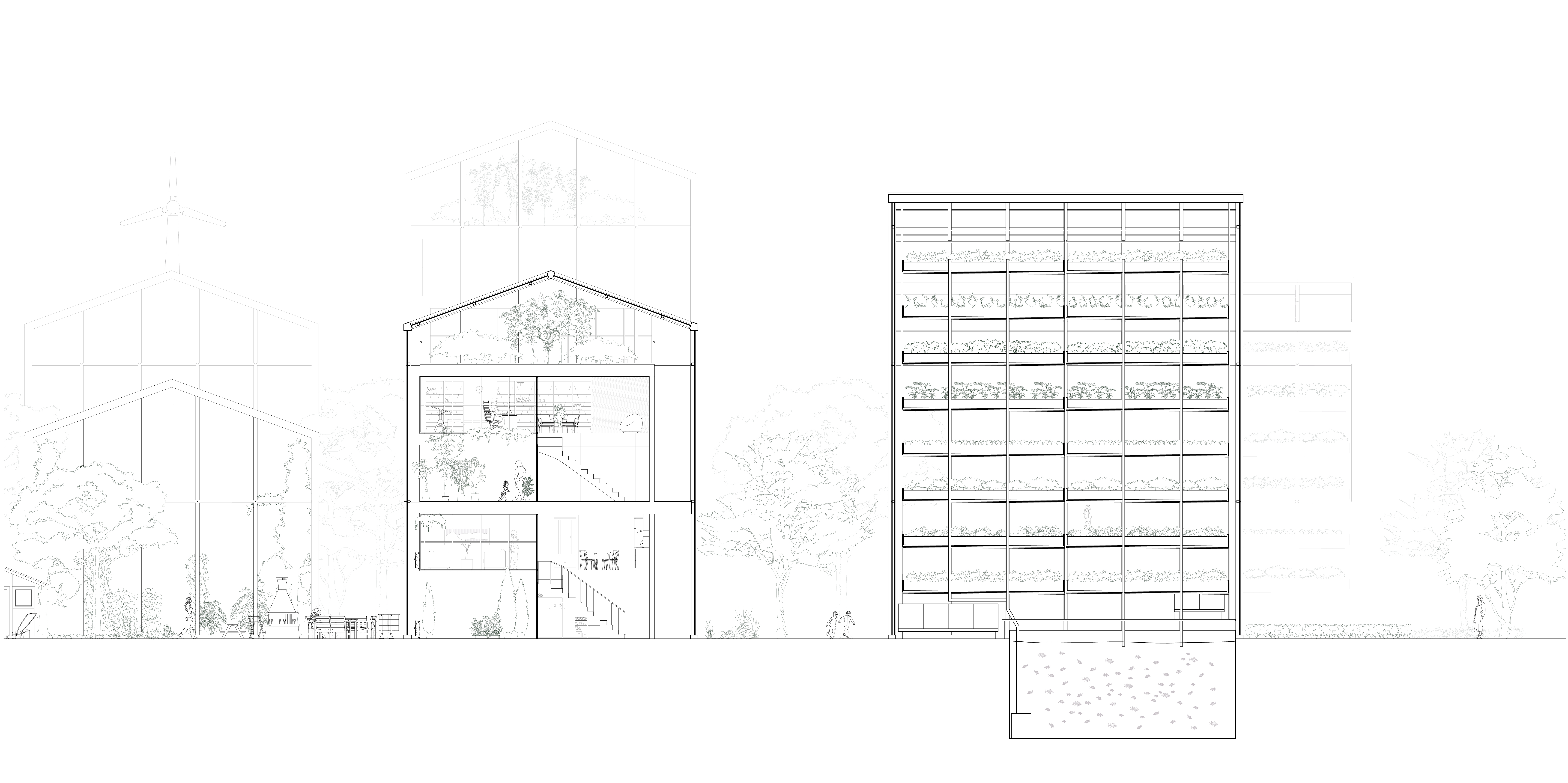Section through courtyard, dwelling building and vertical greenhouse
