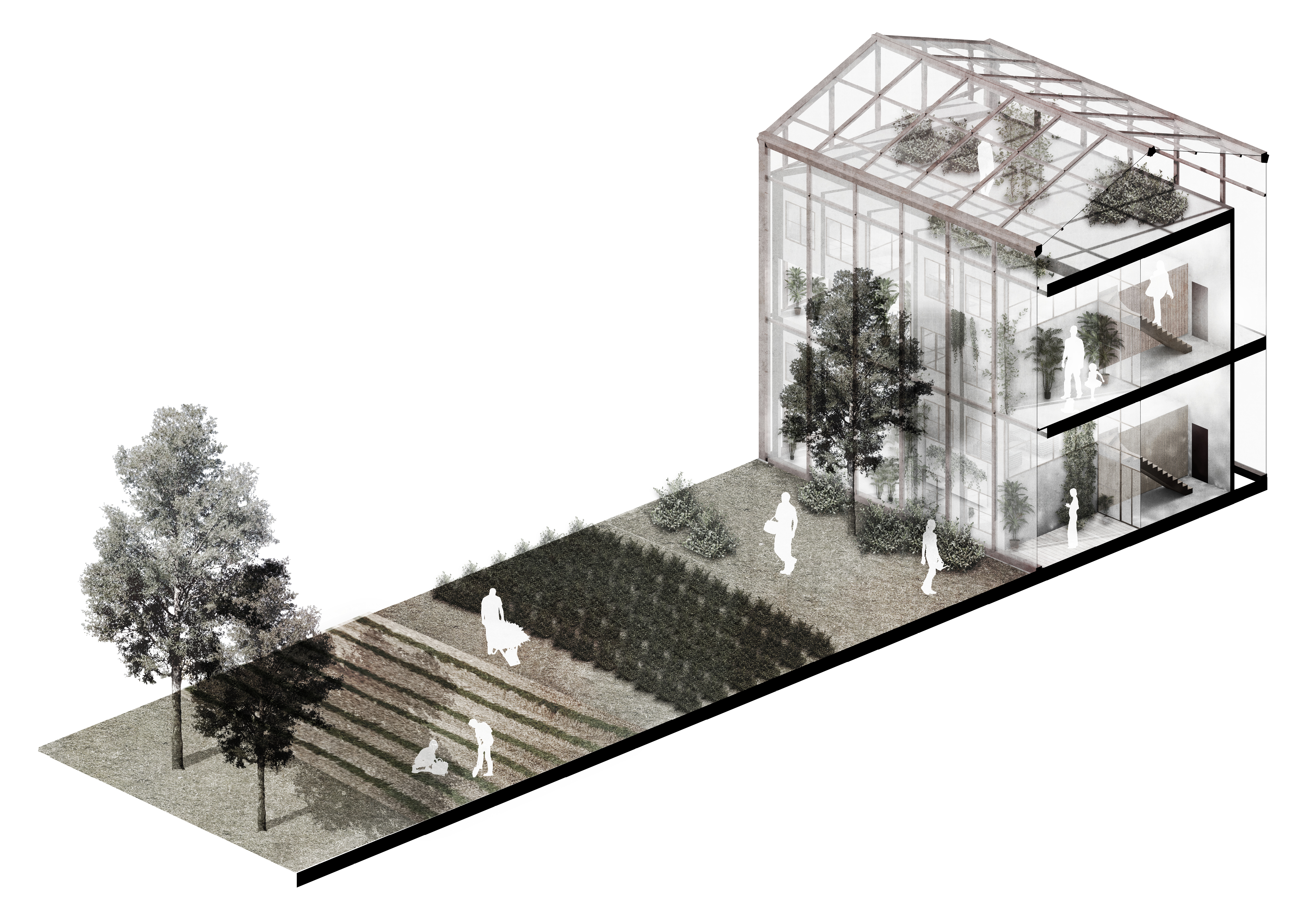 Sectional axonometric of a typical dwelling building