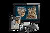 Wirtualny spcer 3DVista