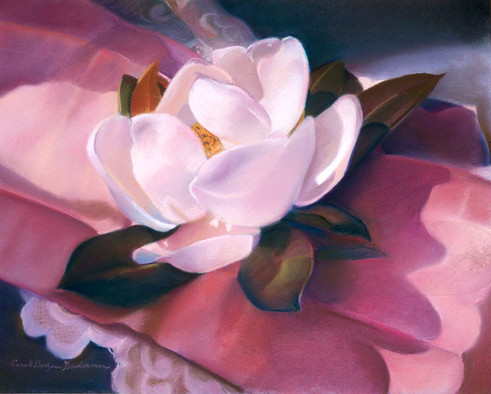 Sunny Magnolia