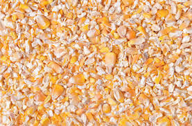 CRUSHED MAIZE