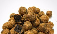 INSECT COATED HALIBUT PELLETS