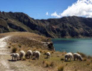 Quito5.JPG