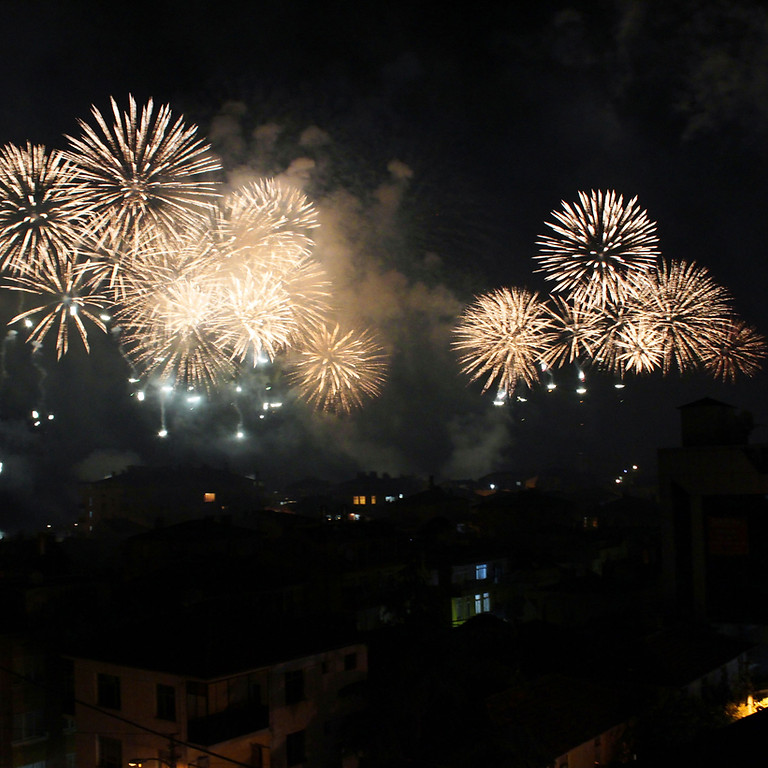 Fireworks Night and BBQ @ The Raven