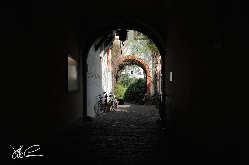Heidelburg Path DSC_4855.jpg