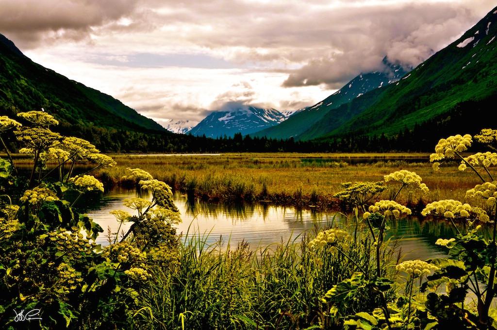 Alaska Watershed 3 DSC_0313 (1).jpg